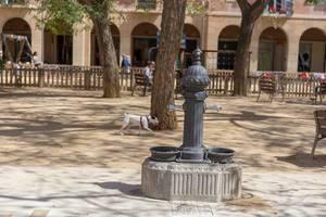 Kleiner, weißer Hund trägt einen Ball hinter einem alten Brunnen am Plaça de Vicenç Martorell Park in Barcelona, Spanien