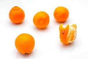 Klementine in Gestalt einer Schnecke