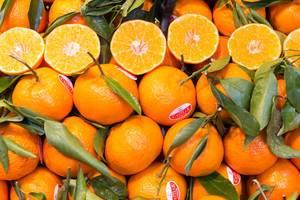 Klementinen mit Stil und Blättern