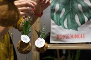 Kokedama / Pflanzenbommel von House Jungle
