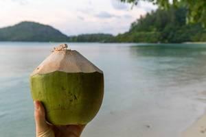 Kokosnuss-Drink  am Strand der Seychellen-Insel Mahé mit Blick auf den indischen Ozean