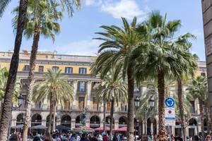 """Königlicher Platz """" Plaça Reial"""" mit Touristengruppen unter Palmenbäumen in Barcelona, Spanien"""