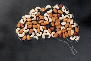 Kreidehirn auf einem schwarzen Brett mit verschiedenen Nüssen - Das Konzept der kreativen Ernährung für das Gehirn