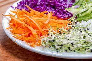 Kresse mit Zwiebeln, Karotten, Gurke, Rotkohl und Reis auf einem weißen Teller