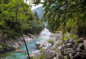 Kristallklares Wasser des türkisen Fluß Soca, zwischen Felsen und Wald