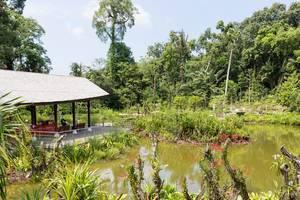 Lake in Botanic Garden Singapore