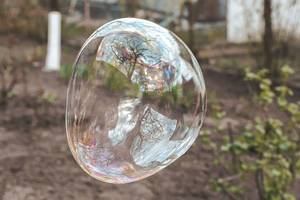 Large soap bubble on a natural background