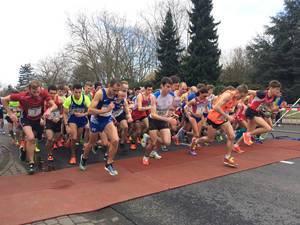 Lauf rund ums Bayerkreuz 2015