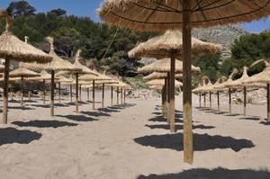 Leerer Strand mit Strohschirmen auf Mallorca