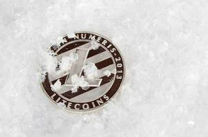 Litecoin covered with snow