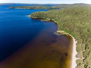 Luftaufnahme der Inseln im Päijänne National Park in Finnland, mit großen Waldflächen