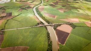 Luftaufnahme des Malogo River, umgeben von Zuckerrohrfeldern bei Victorias City, Western Visayas, Philippinen