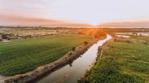 Luftaufnahme mit der Drohne von Plantagen bei Sonnenuntergang an einem Fluss gelegen