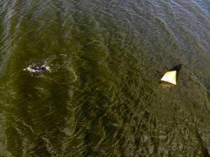 """Luftaufnahme zeigt einen Sportler beim Einschwimmen für den Sportwettkampf """"Ironman 70.3"""" in Lahti, Finnland, neben einer Boje im See Vesijärvi"""