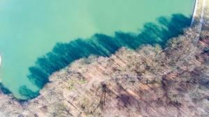 Luftbild: Bäume, Schatten und Gewässer von oben