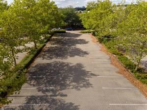 Luftbild eines Parkplatzes mit Bäumen