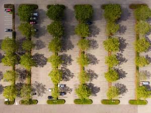 Luftbild: Parkplätze im Herbst