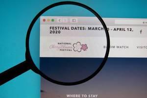 Lupe über dem Logo der Internetseite des nationalen Cherry Blossom Festivals