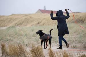Mädchen und ihr schwarzer Labrador beim Gassigehen