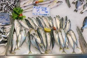 Makrelen auf Eis in einem Fischgeschäft am Kapani Markt in Thessaloniki