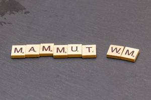 Mammut WM 2026
