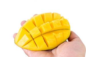 Mango Hedgehog in the hand isolated above white background (Flip 2019)