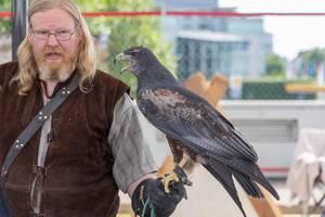 Mann mit einem Falken auf dem Arm