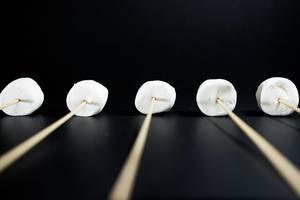 Marshmallows on wooden sticks