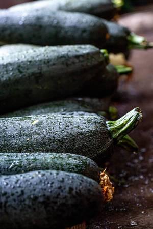 Mehrere reife, gewaschene Zucchini liegen mit Wassertropfen aufgereiht auf dem Boden