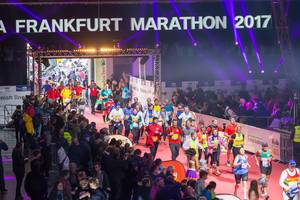 Mere meters to the finish line - Frankfurt Marathon 2017