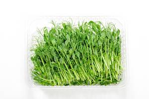 Microgreens of peas in container on a white background, top view