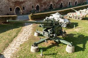 Military Museum with old Canons (Flip 2020)