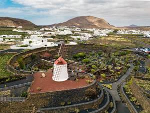 Mill at Cactus garden in Spain / Mühle im Kaktusgarten in Spanien