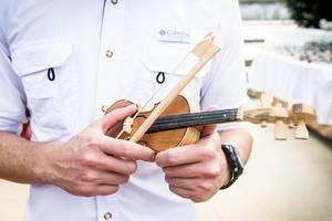 Mini violin toy