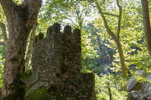 Mittelalterliche Ruine der Burg Castelo Dos Mouros im Wald