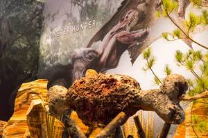Monster Hunter World Kulisse und Plakat - Gamescom 2017, Köln