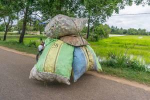 Motorbike carrying Big Bags of Trash in Siem Reap, Cambodia