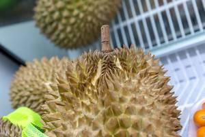 Nahaufnahme einer Durian-Frucht