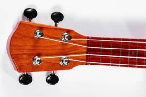 Nahaufnahme Gitarrenhals einer hölzernen Gitarre mit vier Saiten vor weißem Hintergrund