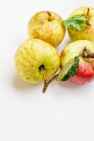 Nahaufnahme - Vier frische Äpfel auf weißem Hintergrund
