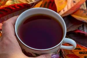 Nahaufnahme von einer Tasse Tee in weiblicher Hand mit bunten Herbstblättern im Hintergrund