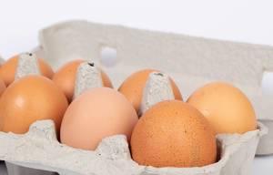 Nahaufnahme von frischen braunen Hühnereiern in Eierkarton vor weißem Hintergrund