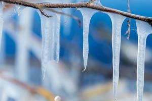 Nahaufnahme von mehreren Eiszapfen