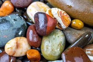 Natural wet colorful sea stones (Flip 2019)