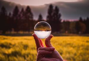 Nature shot upside down in a glas ball