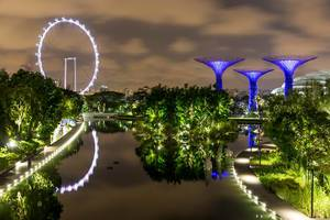 Night Photo of Singapore Downtown Core with Gardens By The Bay Supertree Grove and Ferries Wheel Singapore Flyer with Reflection in the Water