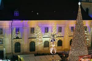 Night view of bug Christmas tree outdoors (Flip 2019)
