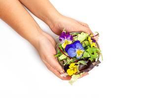 Obene Aufnahme von weiblicher Hand mit einer Schüssel Salatblätter