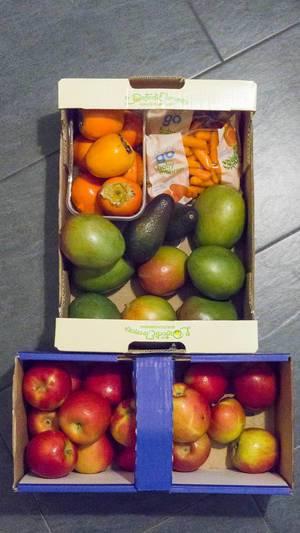 Obst in Kartonschachteln: Äpfel, Mango, Avocado, Kakipflaumen und Babymöhren