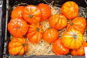 Ochsenherz-Tomaten aus Deutschland